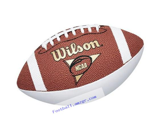 Wilson NCAA Mini Autograph Football
